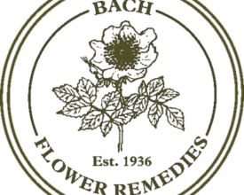 Elm, Back Flower Remedy, 20ml