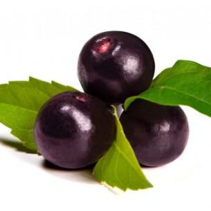 Acai Berry P.E. 4:1
