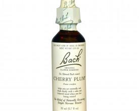 Cherry Plum, Bach Flower Remedy, 20ml