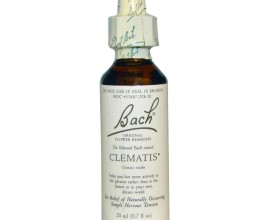Clematis, Bach Flower Remedy, 20ml