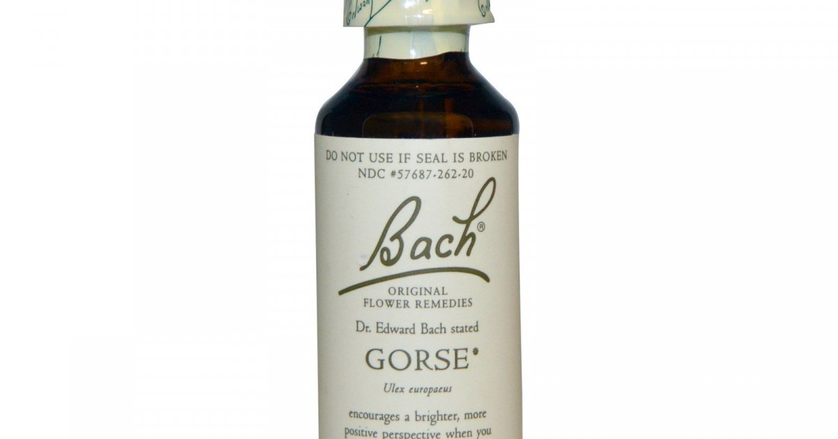 Gorse, Bach Flower Remedy, 20ml