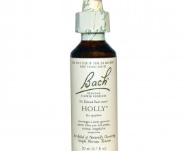 Holly, Bach Flower Remedy, 20ml