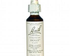 Holly, Bach Flower Remedy, 20ml