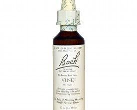 Vine, Bach Flower Remedy, 20ml