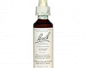 Vine, Bach Flower Remedy, 20ml