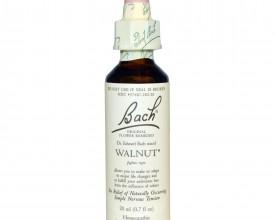 Walnut, Bach Walnut Remedy, 20ml