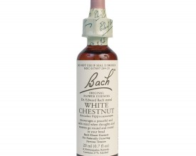 White Chestnut, Bach Flower Remedy, 20ml