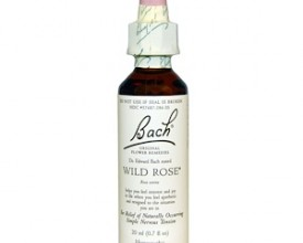 Wild Rose, Bach Flower Remedy, 20ml