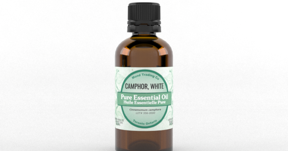 Camphor, White - Pure Essential Oil