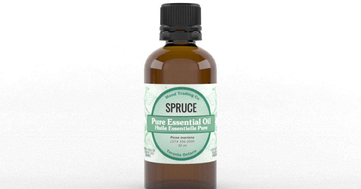Spruce - Pure Essential Oil
